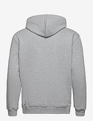 Lee Jeans - BASIC ZIP THROUGH HO - basic sweatshirts - grey mele - 1