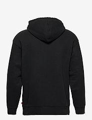 LEVI´S Men - T2 RELAXED GRAPHIC PO SSNL SER - hoodies - neutrals - 1