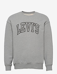 LEVI´S Men - RELAXED T2 GRAPHIC CREW 1873 C - tops - greys - 1