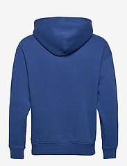 LEVI´S Men - T3 RELAXD GRAPHIC HOODIE HM HO - hoodies - blues - 1