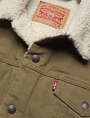 LEVI´S Men - TYPE 3 SHERPA TRUCKER COUGAR C - jeansjackor - neutrals - 2