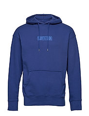 RELAXED GRAPHIC HOODIE SSNL BA - BLUES