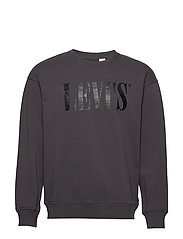 RELAXED GRAPHIC CREWNECK 90S S - GREYS