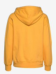 LEVI´S Women - GRAPHIC STANDARD HOODIE HOODIE - hættetrøjer - yellows/oranges - 1
