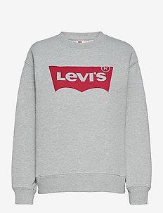 GRAPHIC STANDARD CREW CREW COR - sweatshirts - greys