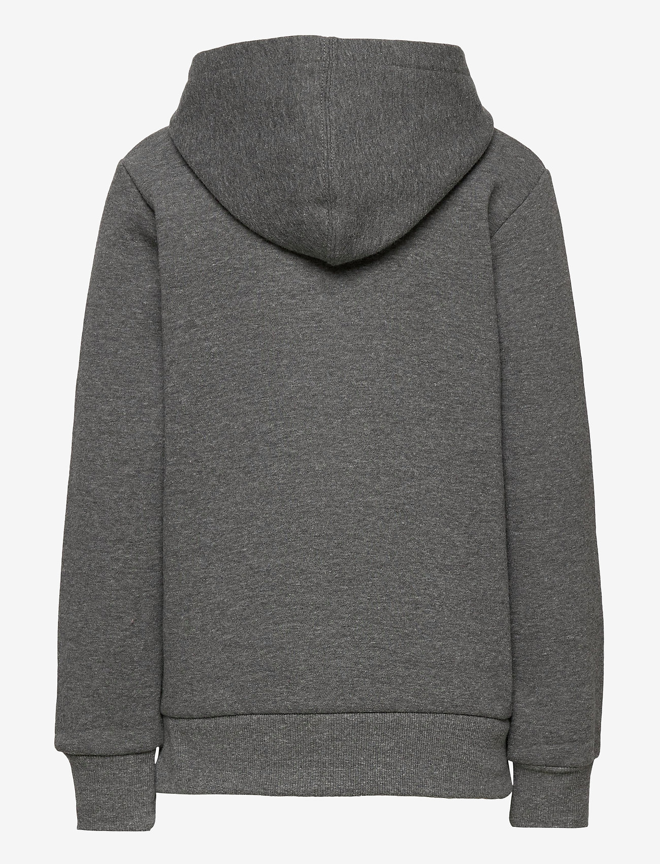 Levi's - CHENILLE BATWING HOODIE - kapuzenpullover - charcoal heather - 1