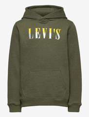 Levi's - LVB MULTICOLOR LOGO PO HOODIE - pulls à capuche - olive night heather - 0