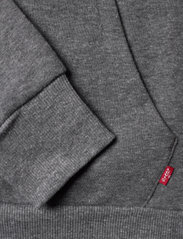 Levi's - CHENILLE BATWING HOODIE - kapuzenpullover - charcoal heather - 3