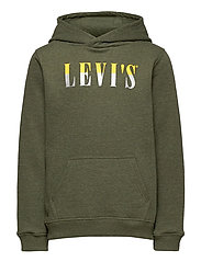LVB MULTICOLOR LOGO PO HOODIE - OLIVE NIGHT HEATHER