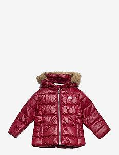 FURPUFFER - veste rembourrée - cabernet