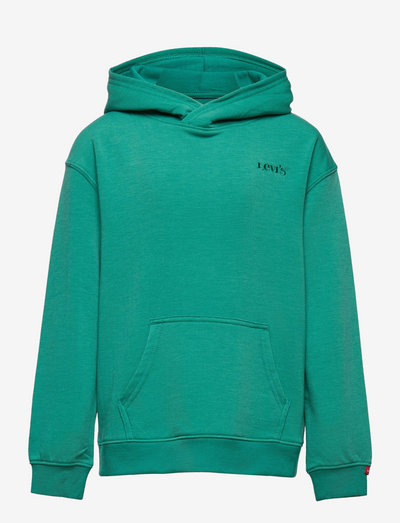 LVB RELAXED CORE PULLOVER HD - hoodies - alhambra