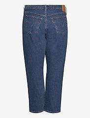 Levi's Plus Size - PL 501 CROP CHARLESTON OUTLAST - boyfriend jeans - dark indigo - worn in - 1