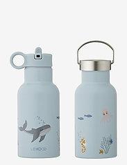 Anker water bottle - SEA CREATURE MIX