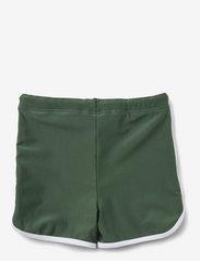 Liewood - Dagger swim pants - spodenki - garden green - 1