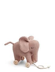 Dahlia teddy on wheels - ELEPHANT ROSE