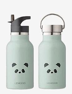 Anker water bottle - panda dusty mint