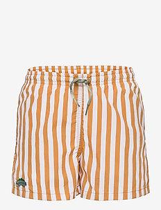 Duke board shorts - spodenki - stripe