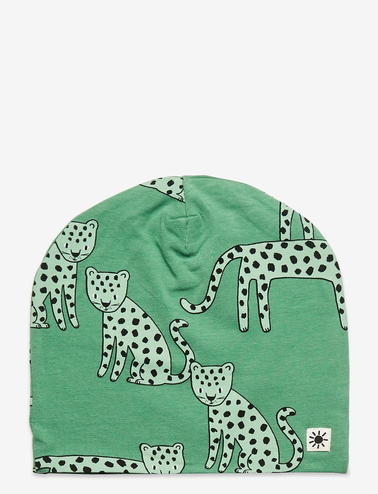 Lindex - Cap tricot Leo Koala - hatte og handsker - green - 0