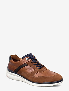 MORTIMER - low tops - 3 - cognac/t.d.moro/cognac/pacific