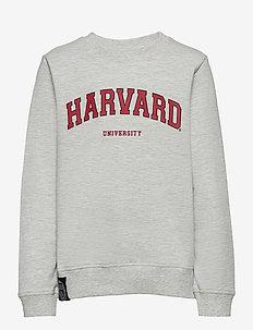 NLMUNIVERSITY MATTI LS SWEAT PARK - sweatshirts - light grey melange