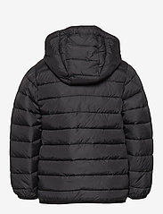 Lyle & Scott Junior - Lightweight Puffa Jacket - puffer & padded - black - 2