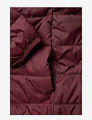 Lyle & Scott Junior - Lightweight Puffa Jacket - puffer & padded - winetasting - 4