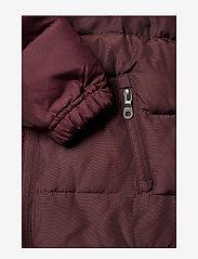 Lyle & Scott Junior - Padded Jacket - puffer & padded - winetasting - 4