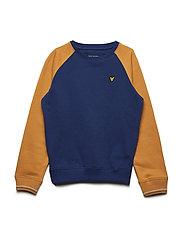 Reverse Texture Raglan Sweatshirt - TWILIGHT BLUE