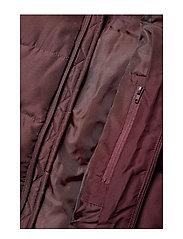 Lyle & Scott Junior - Padded Jacket - puffer & padded - winetasting - 5