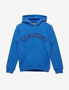 L&S Logo OTH Hoody - LAKE BLUE