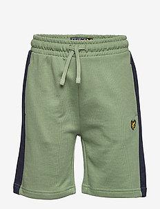 Panel Short Hedge Green - shorts - hedge green