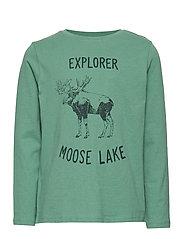 Printed cotton t-shirt - GREEN