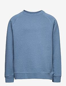 RAGLAN - sweatshirts - blue
