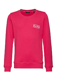 sweat shirt - AZALEA-PINK