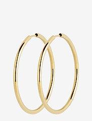 Maria Black - Sunset Hoop 35 *PAIR - korvarenkaat - gold hp - 0