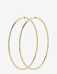 Maria Black - Sunset Hoop 70 *PAIR - korvarenkaat - gold hp - 0