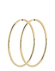 Sunset Hoop 50 *PAIR - GOLD HP