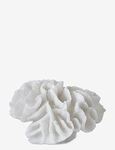CORAL, gills - dekorationer - white