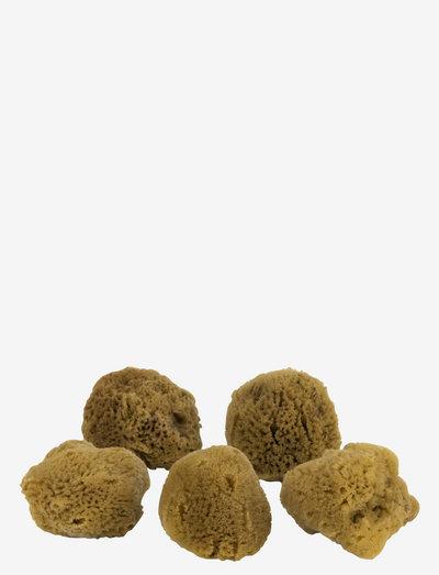 OCEAN Face sponges - 5 pcs. - schwämmchen & applikatoren - dark