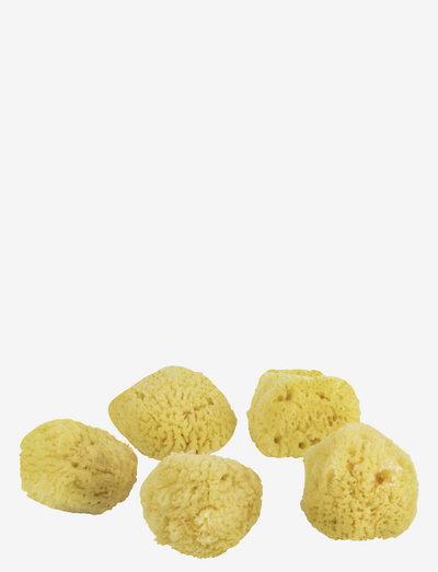 OCEAN Face sponges - 5 pcs. - sponsjes & applicators - light