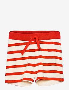 Stripe shorts - shorts - red