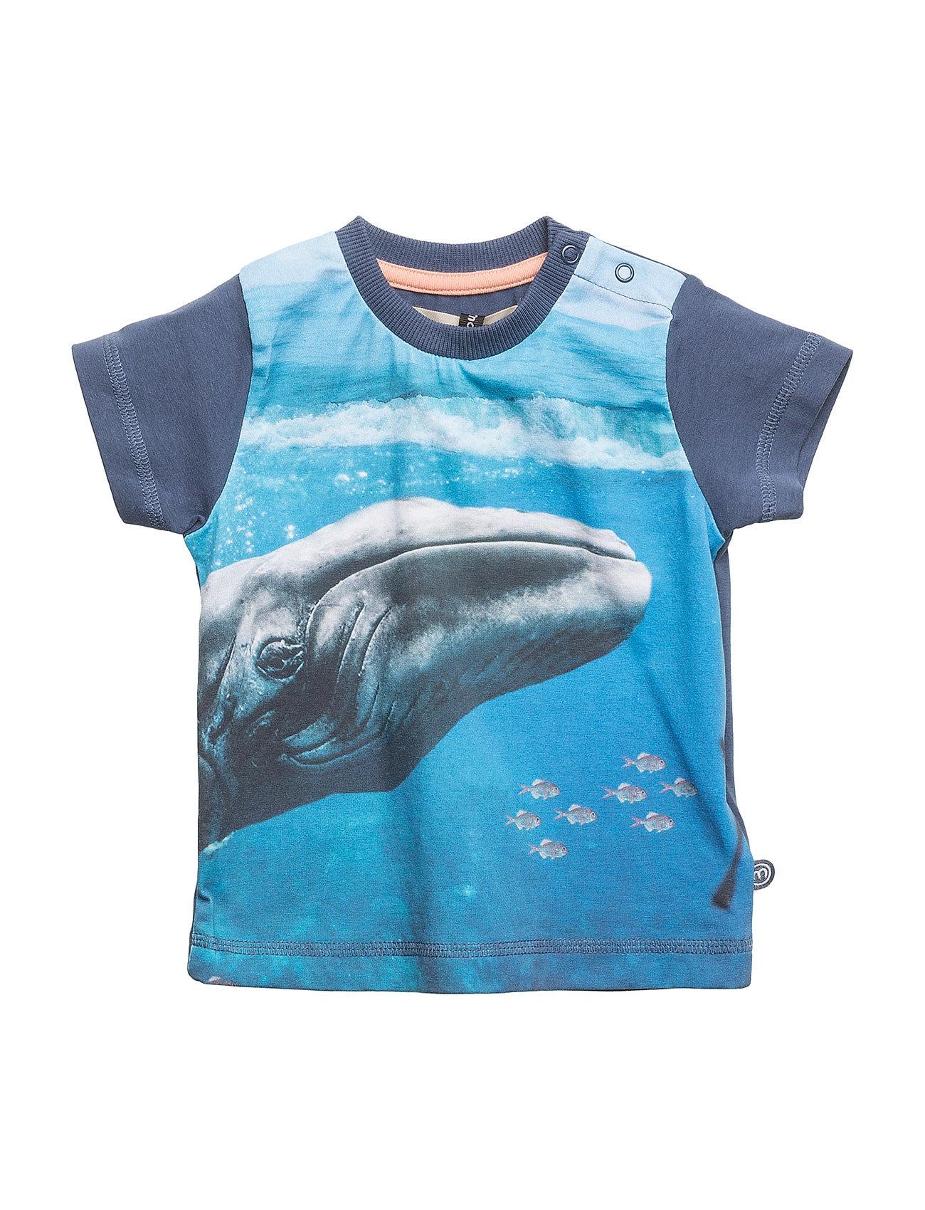 Minymo T-shirt SS w. photo - ENSIGN BLUE