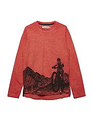 T-shirt LS w. print mountain - BURNT OCHRE