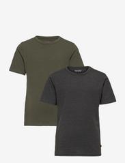 Basic 32 -T-shirt SS (2-pack) - BEETLE