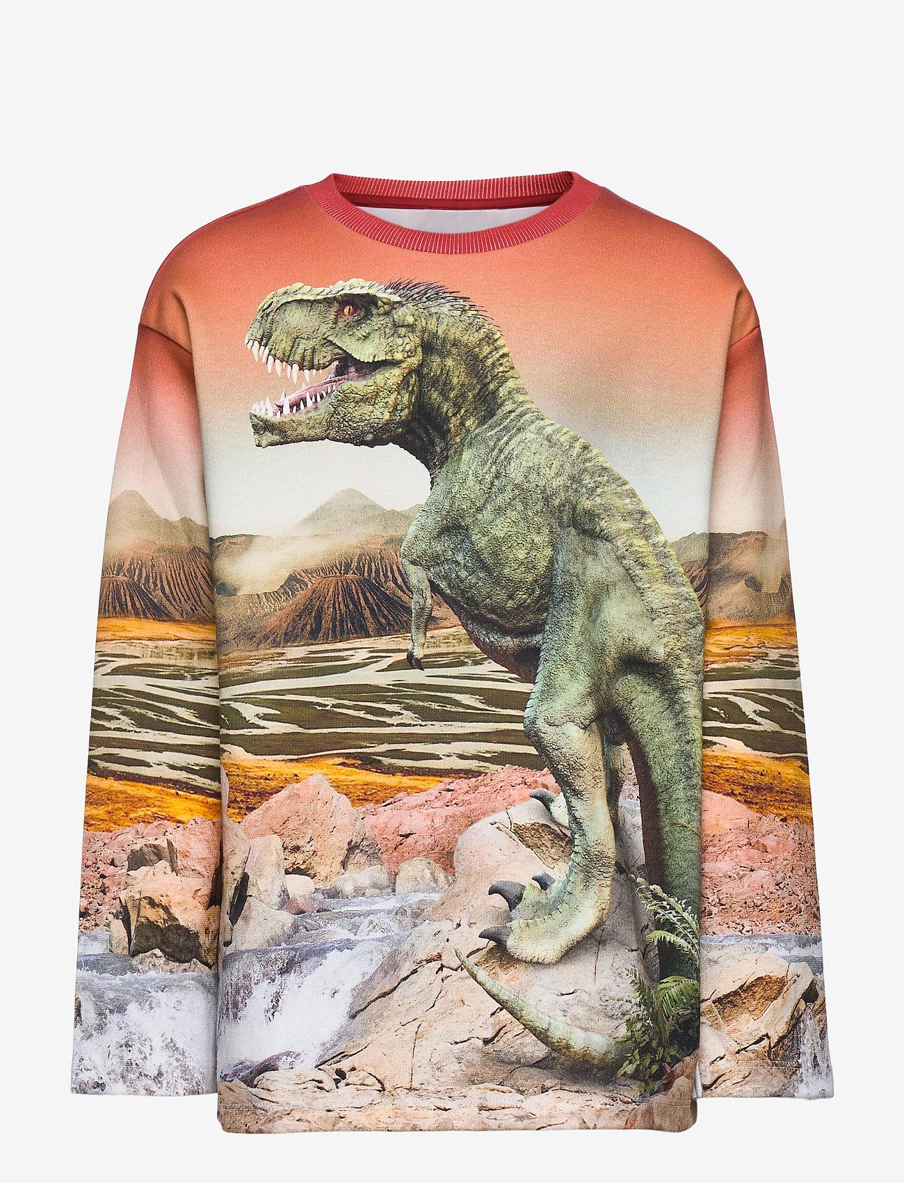 Molo - Mountoo - sweatshirts - dino landscape - 0