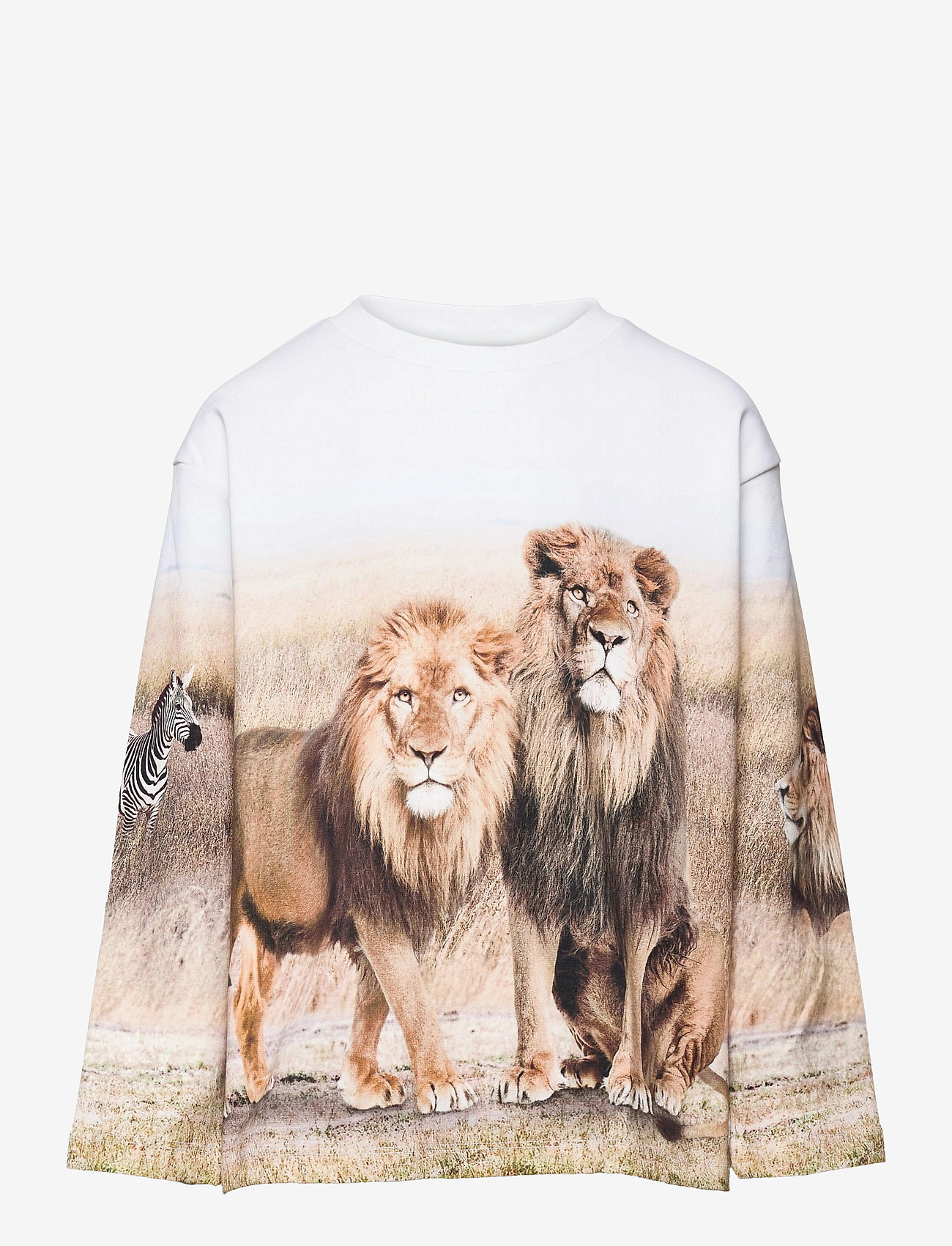 Molo - Mountoo - sweatshirts - savanna - 0