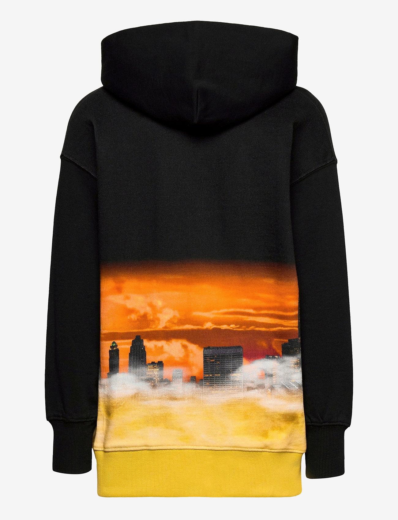 Molo - Mozzy - hoodies - above the city - 1