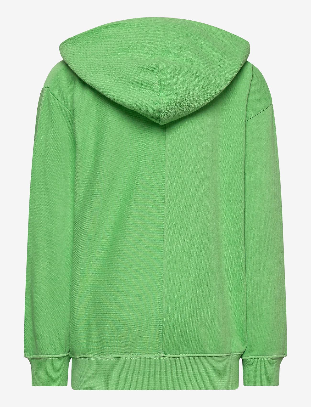 Molo - Meqo - hoodies - future green - 1