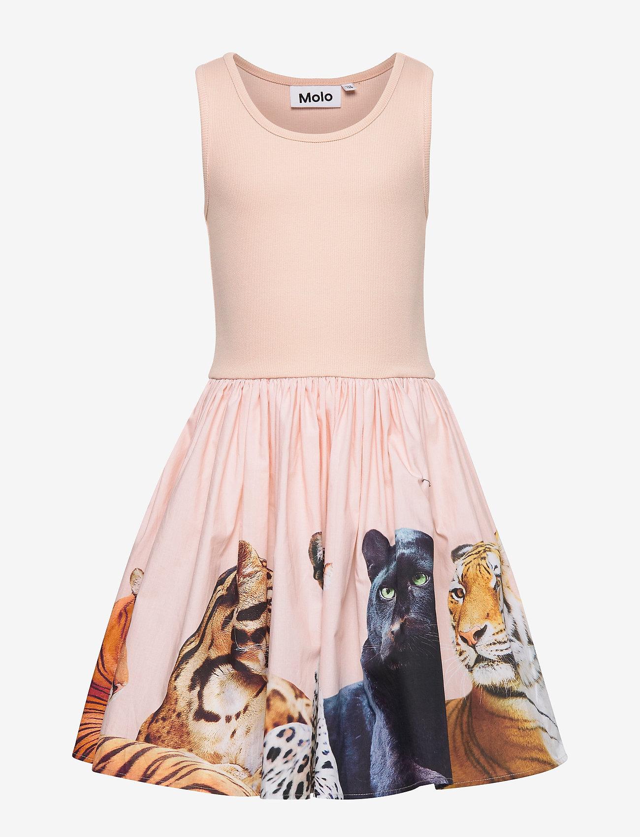 Molo - Cassandra - kjoler - big cats