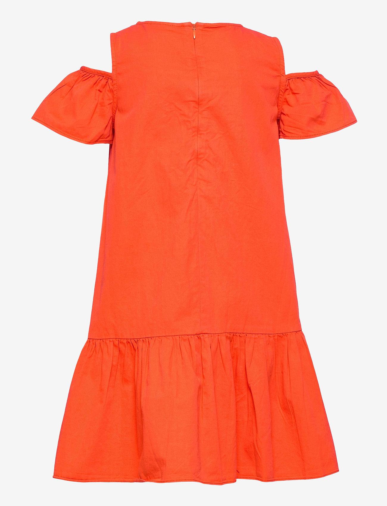 Molo - Calanthe - jurken - poppy - 1
